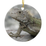 Horned Iguana Ornament