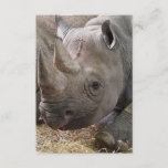 Horned Rhino Invitations