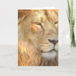 I Love Lions Greeting Card