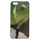 Iguana in the Tropics Cover For iPhone 5C