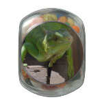Iguana in the Tropics Jelly Belly Candy Jar