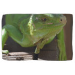 Iguana in the Tropics Kitchen Towel