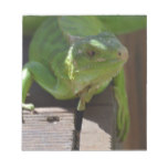Iguana in the Tropics Notepad