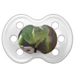 Iguana in the Tropics Pacifier