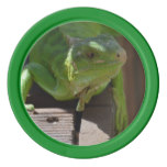 Iguana in the Tropics Poker Chips Set