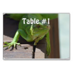 Iguana in the Tropics Table Number