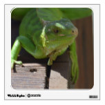 Iguana in the Tropics Wall Sticker