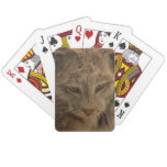 Impressive Lynx Playing Cards