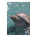 Ipad Mini QPC template iPad Mini Cove - Customized iPad Mini Covers