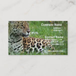 Jaguar Cat Business Card