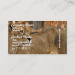 Lady Lioness Business Cards