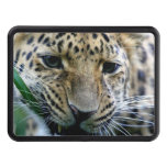 Leopard Trailer Hitch Cover