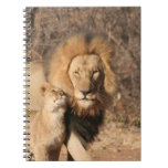 Lion and Lion Cub Notebook