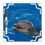 Lovable Dolphin Dry Erase Board