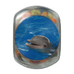 Lovable Dolphin Glass Jar