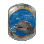 Lovable Dolphin Glass Jars