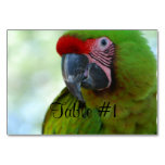 Macaws Table Number
