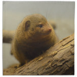 Mongoose a Tree Branch Cloth Napkin