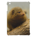 Mongoose a Tree Branch Cover For The iPad Mini