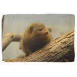 Mongoose a Tree Branch Hand Towel