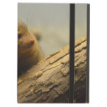 Mongoose a Tree Branch iPad Air Case