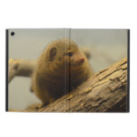Mongoose a Tree Branch iPad Air Cover