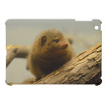 Mongoose a Tree Branch iPad Mini Covers