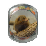 Mongoose a Tree Branch Jelly Belly Candy Jar