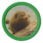 Mongoose a Tree Branch Poker Chips
