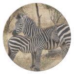 Mother and Baby Zebra  Plate