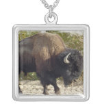 North American Bison Necklace