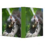 Nutty Squirrel Binder