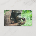 Orangutan Ape Business Card