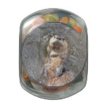 Otter Back Float Glass Candy Jar