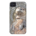 Otter Back Float iPhone 4 Cover