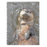 Otter Back Float Notebook