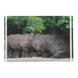 Pair of Rhinos Placemat