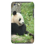 Panda  iTouch Case