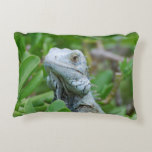 Peek-a-boo Iguana Accent Pillow