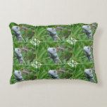 Peek-a-boo Iguana Decorative Pillow