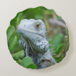 Peek-a-boo Iguana Round Pillow