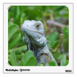 Peek-a-boo Iguana Wall Sticker
