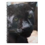 Pensive Black Panther Notebook