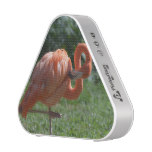 Perfect Pink Flamingo Bluetooth Speaker