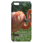 Perfect Pink Flamingo Case For iPhone 5C