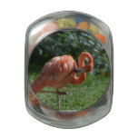 Perfect Pink Flamingo Glass Candy Jars