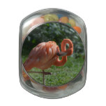 Perfect Pink Flamingo Glass Jars