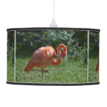 Perfect Pink Flamingo Hanging Lamp