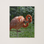 Perfect Pink Flamingo Jigsaw Puzzle