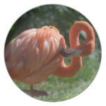 Perfect Pink Flamingo Melamine Plate
